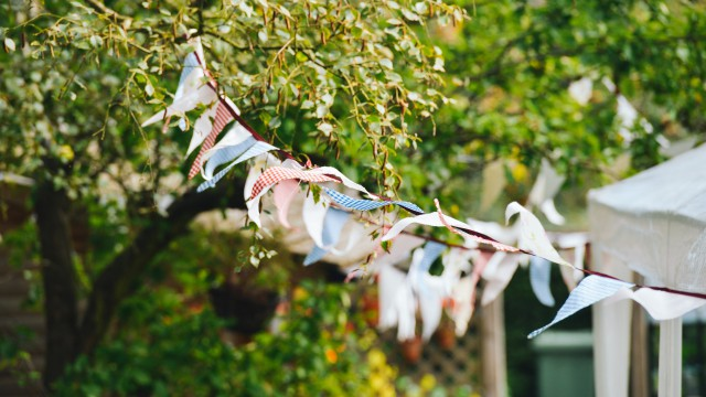 undercover_bunting_01