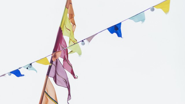 undercover_bunting_02